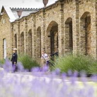 Lavender outside pre prep entrance